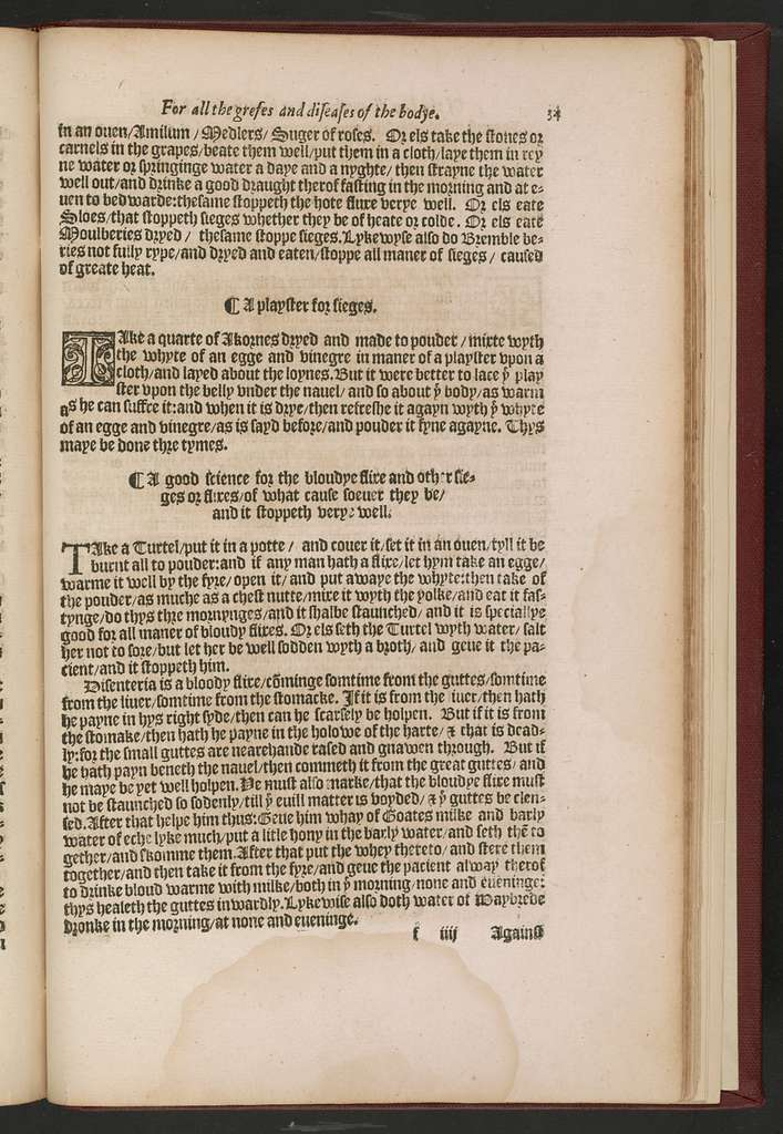 A most excellent and perfecte homish apothecarye or homely physick booke : for all the grefes and diseases of the bodye