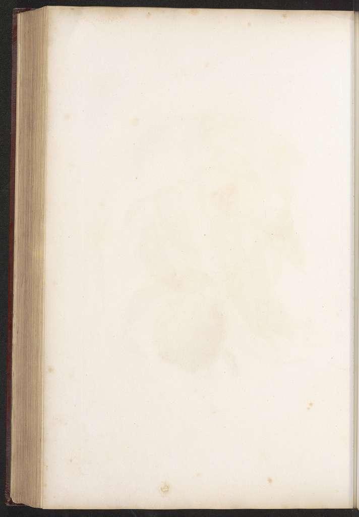 La botanique de J. J. Rousseau,