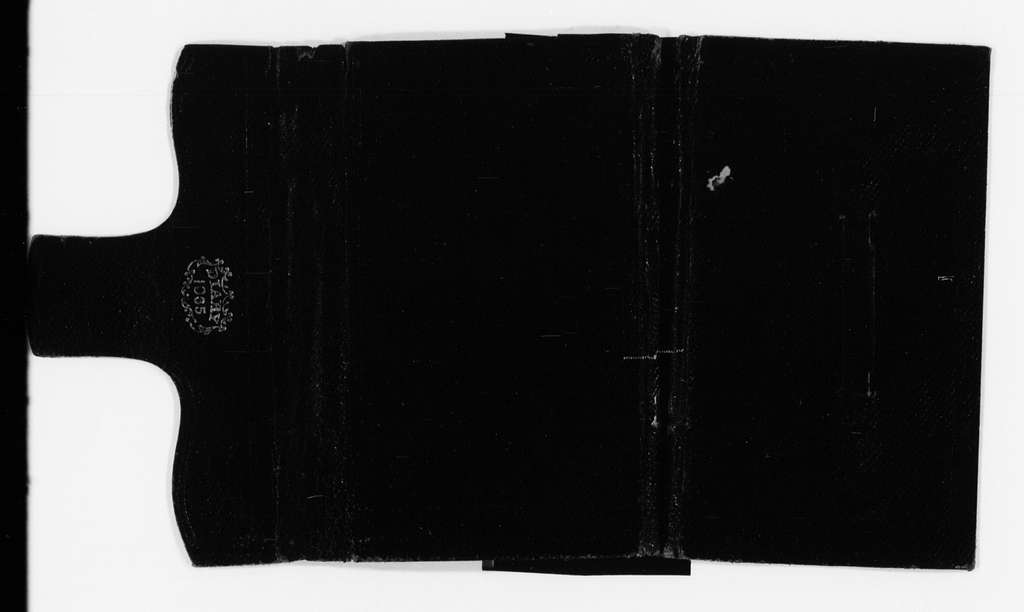 Susan B. Anthony Papers: Daybook and Diaries, 1856-1906; Diaries; 1865