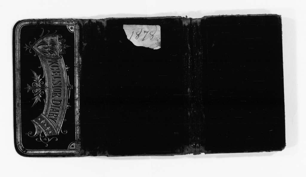 Susan B. Anthony Papers: Daybook and Diaries, 1856-1906; Diaries; 1878