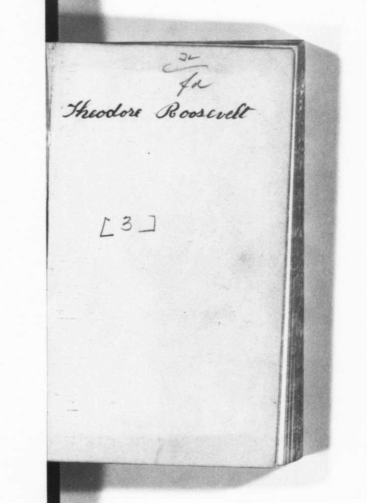 Theodore Roosevelt Papers: Series 8: Personal Diaries, 1878-1884; Vol. 3, 1880, Jan. 1-Dec. 31