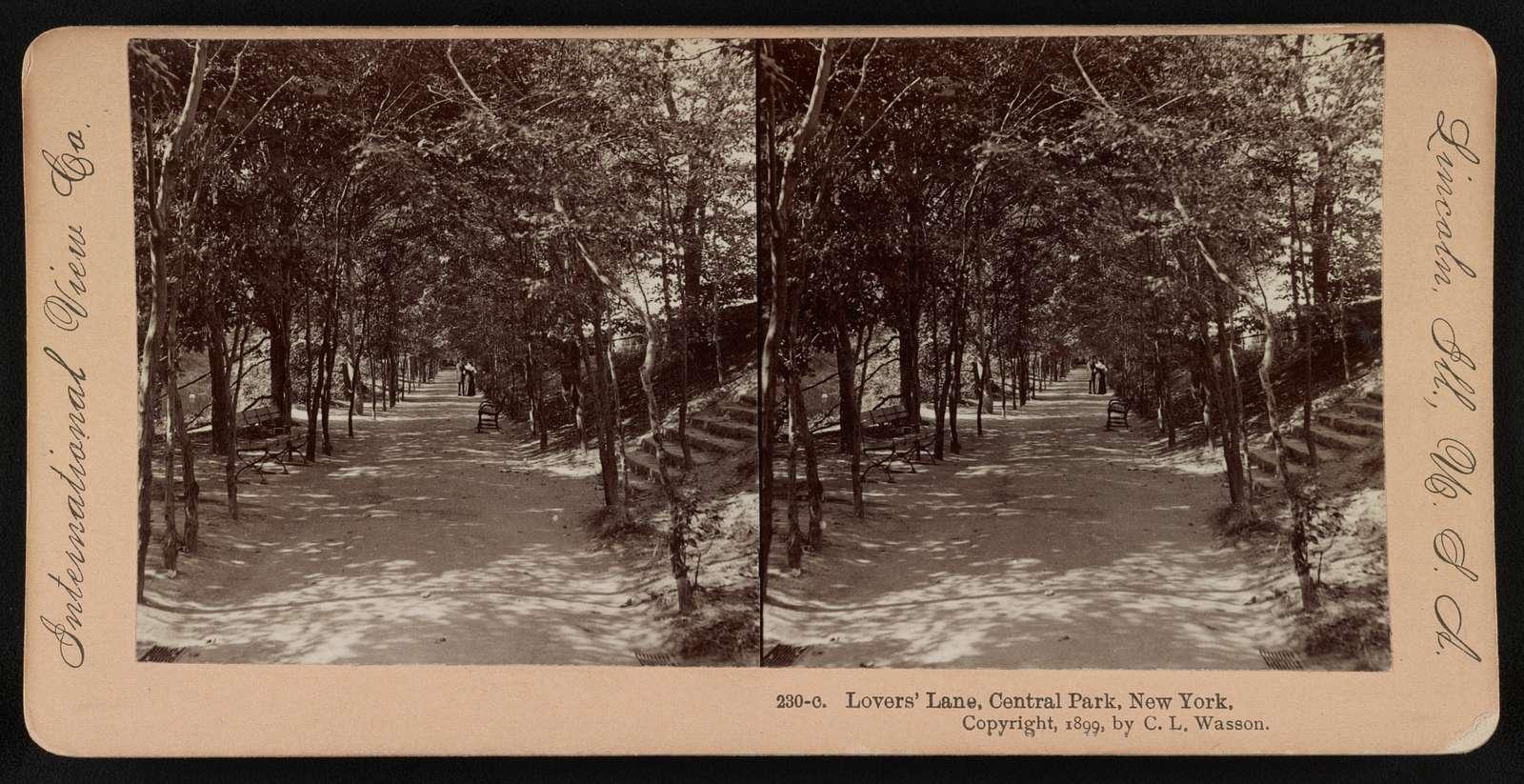 Lovers' Lane, Central Park, New York