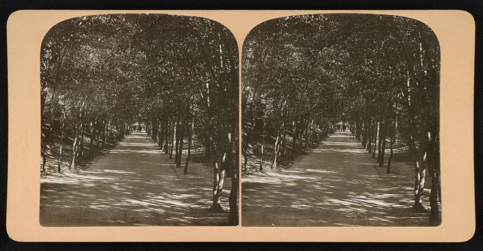 Lover's Lane, Central Park, New York