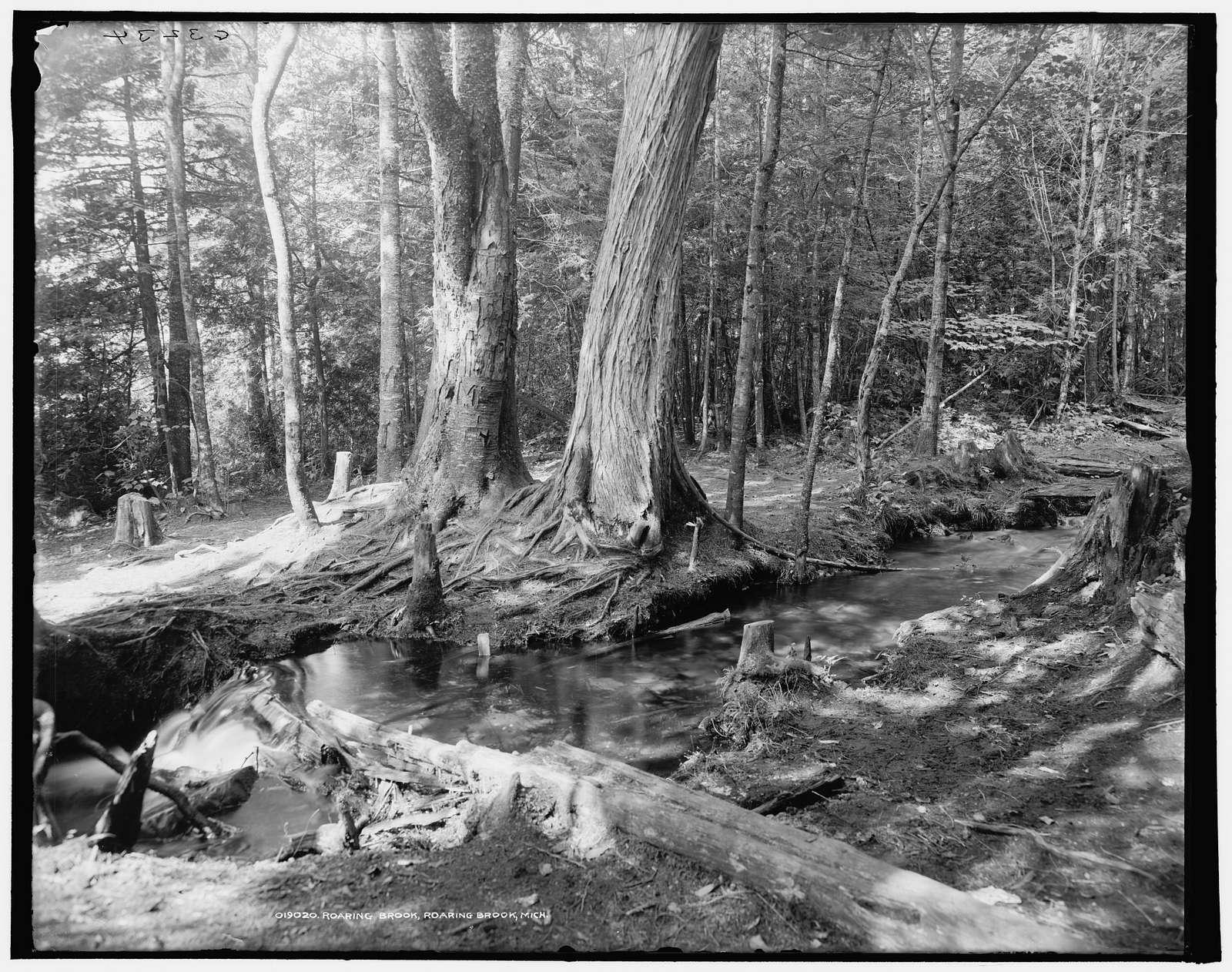 Roaring Brook, Roaring Brook, Mich