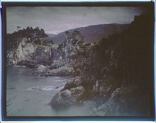 Seacoast with cliffs and cypress trees in the Carmel, California area