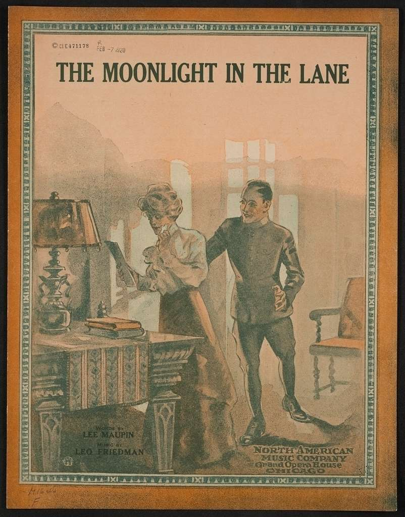 The moonlight in the lane