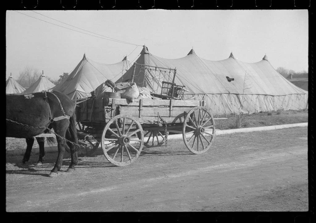 Untitled photo, possibly related to: Refugees lined up at meal time in the camp for white flood refugees in Forest City, Arkansas