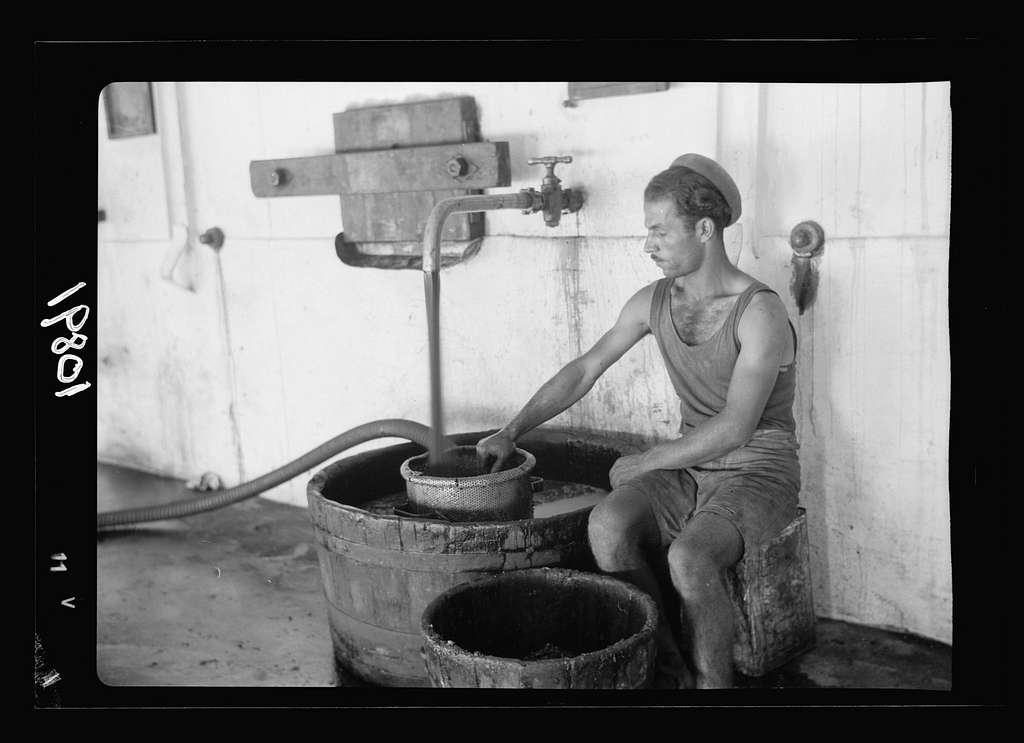 Vintage activities at Richon-le-Zion, Aug. 1939. Red grape juice flowing into strainer from where it is pumped