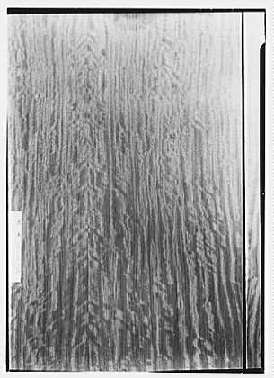 National Cash Register Co., 50 Rockefeller Plaza, New York City. Detail of wood paneling in studio