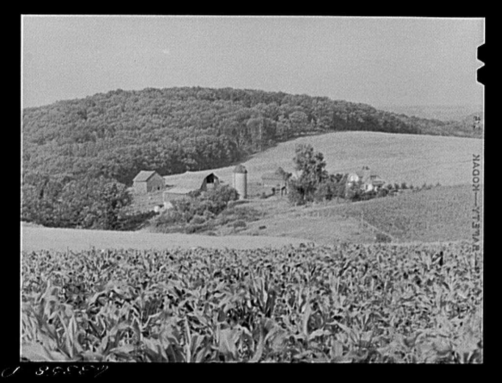 Dairy farm. Iowa County, Wisconsin