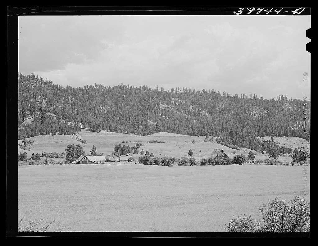 Farmland and farmstead. Garden Valley, Boise County, Idaho