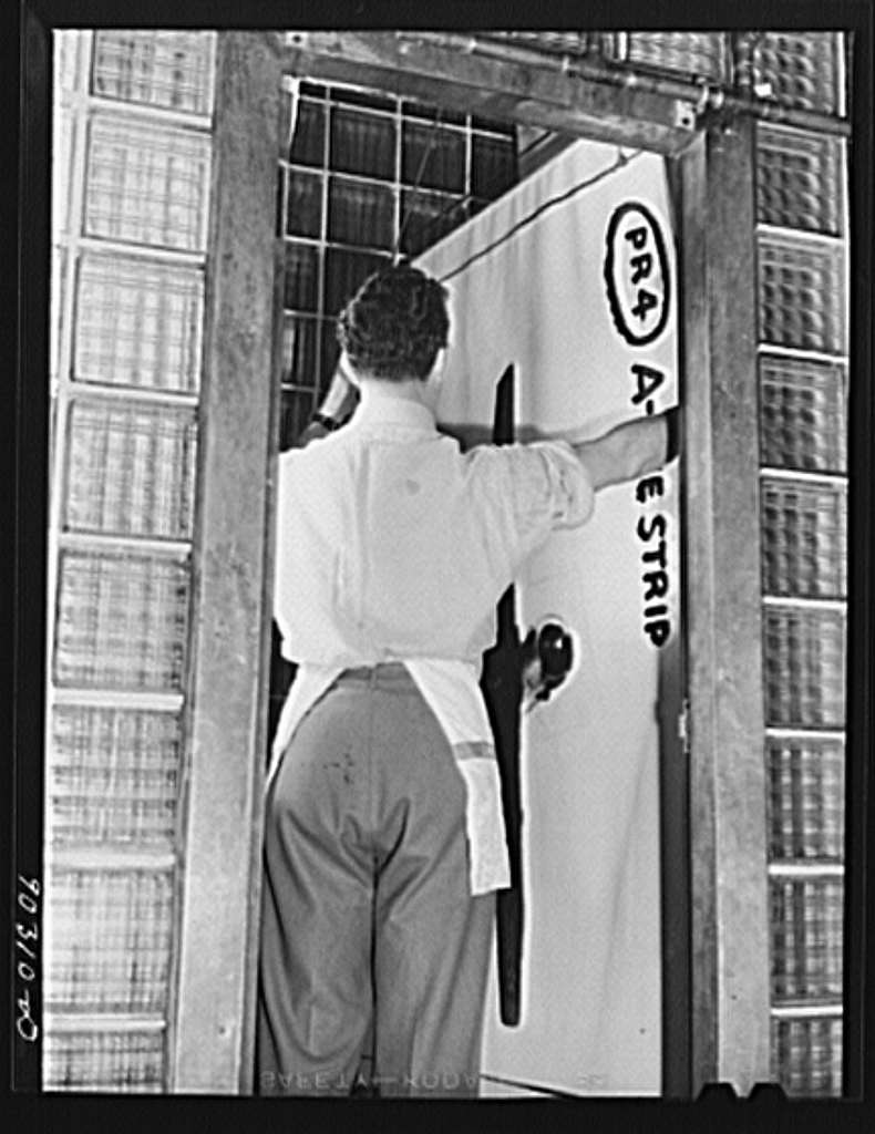 Washington, D.C. Preparing the defense bond sales photomural to be installed in the Grand Central terminal, New York, in the photographic laboratory of the FSA (Farm Security Administration). Hanging developed print strip in the washer