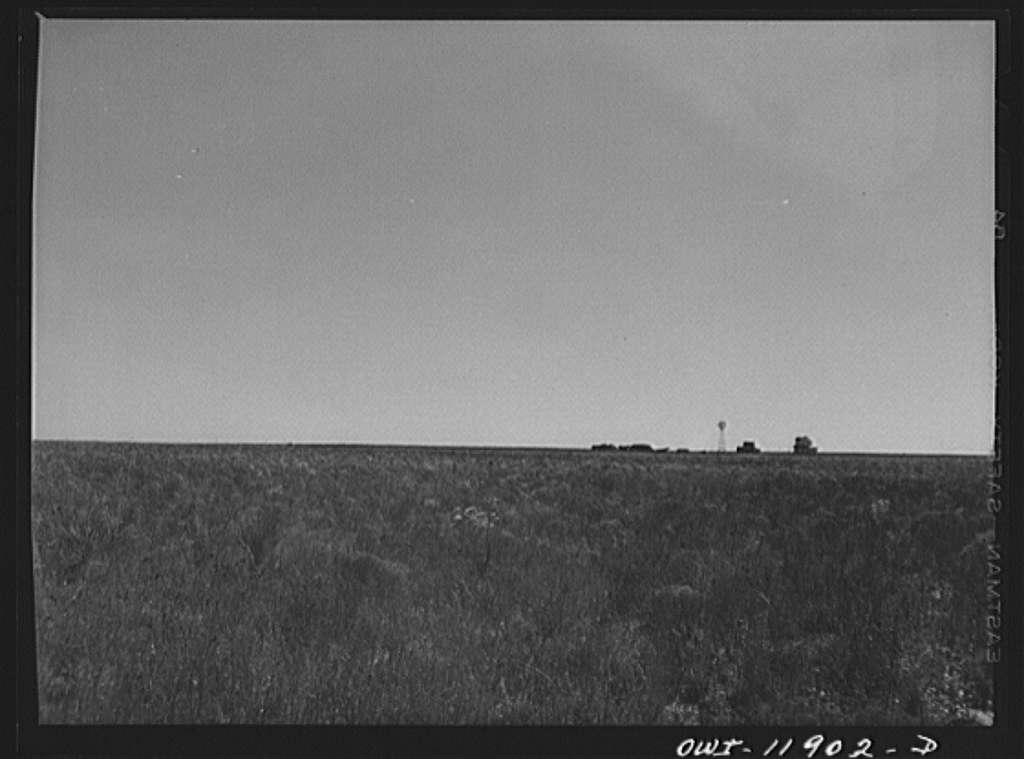 Gaines County, Texas. Farmstead