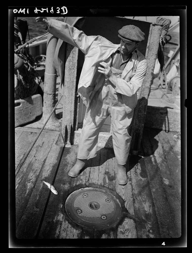 On board a fishing vessel out from Gloucester, Massachusetts. A fisherman coming up from the living quarters below and putting on his oilskins, getting ready to handle the catches that come aboard