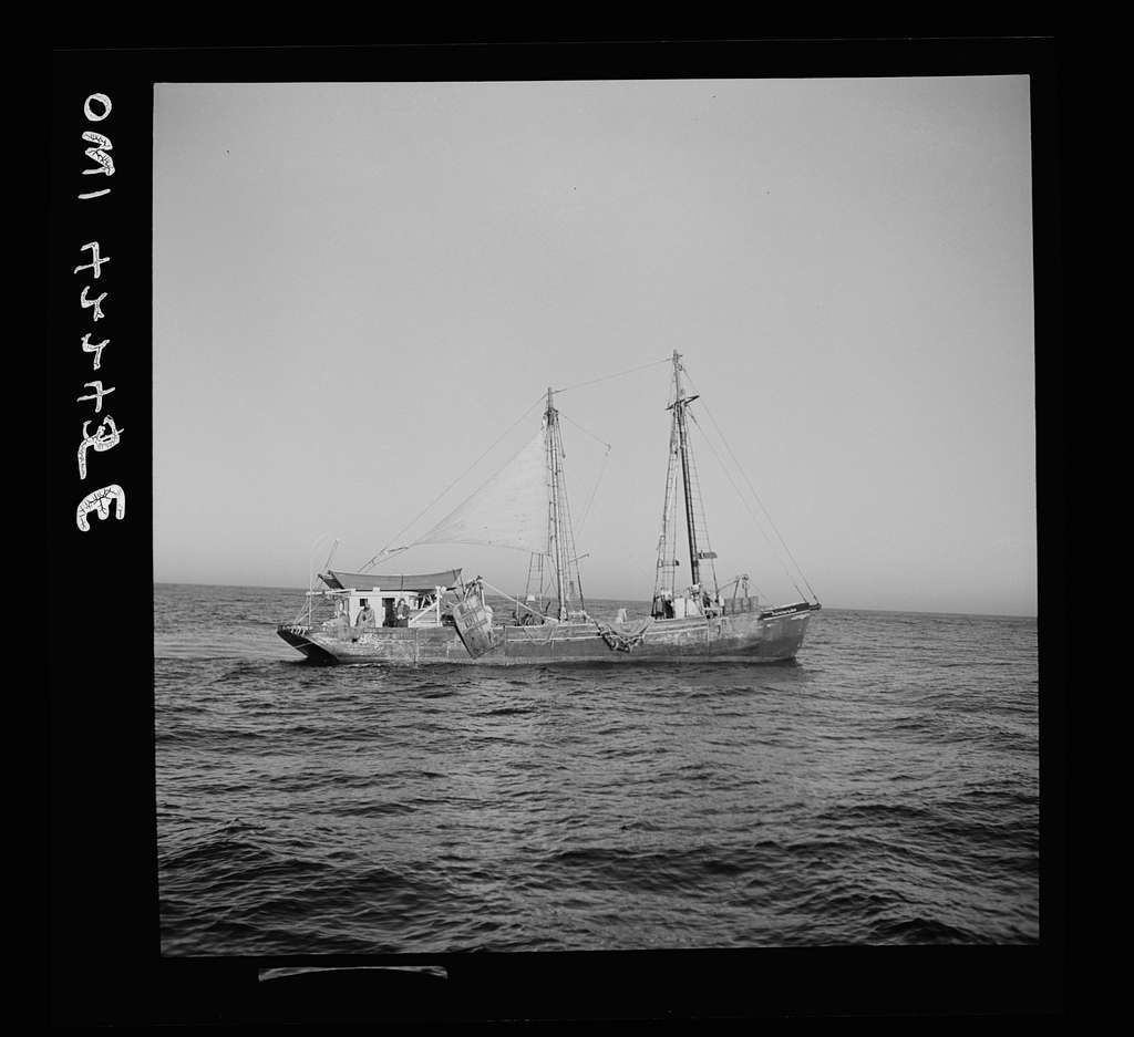 """On board a fishing vessel out from Gloucester, Massachusetts. A Nantucket dragger, or New England type otter trawler, the """"Theresa and Dan"""""""