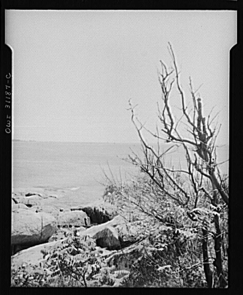 Gloucester, Massachusetts. The New England coast, lined with great masses of rocks