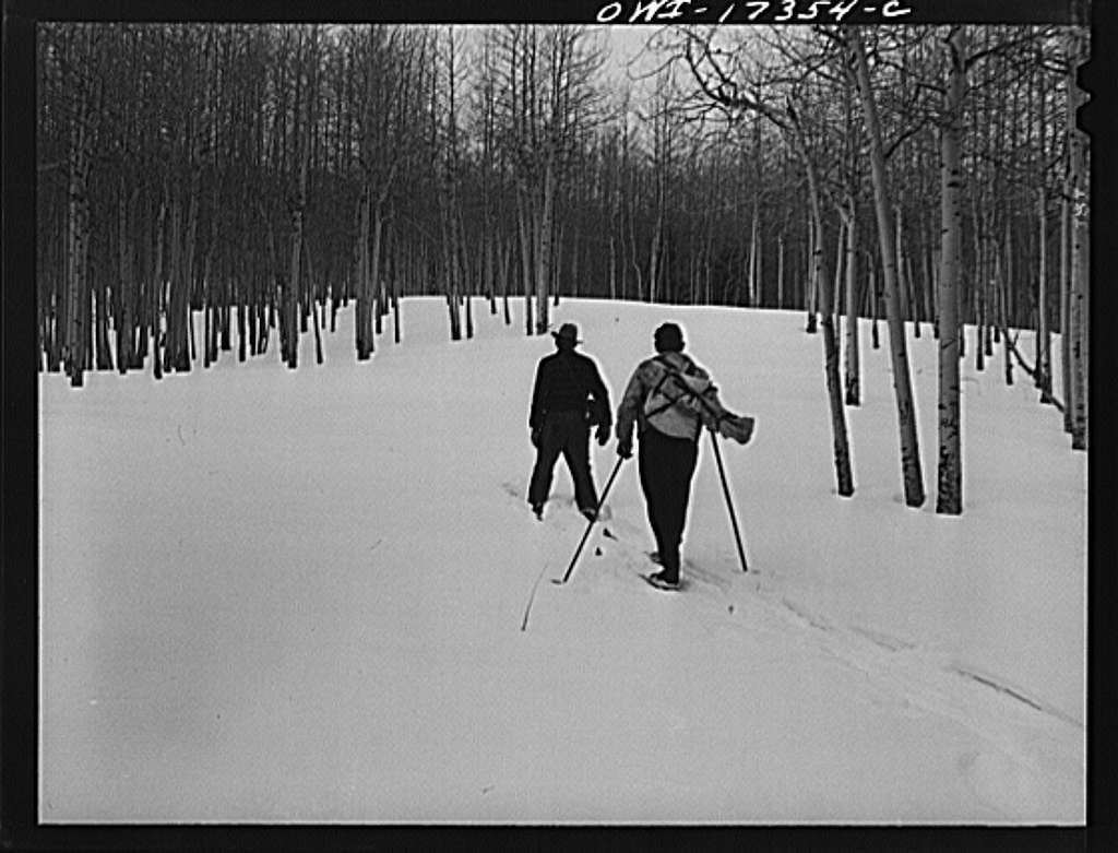 Penasco (vicinity), New Mexico. U.S. Forest Rangers on snow shoes and skiis going into the Sangre de Cristo Mountains to measure the snow
