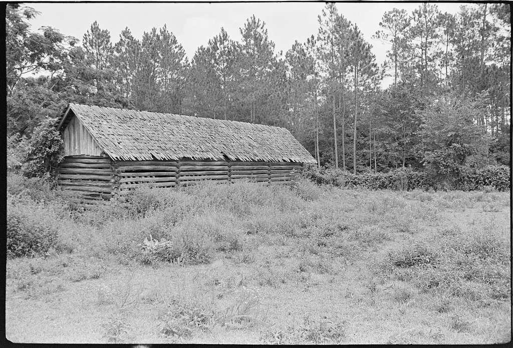 Gaskins farms, Berrien County, Georgia; Elton Clark farm, Colquitt County, Georgia
