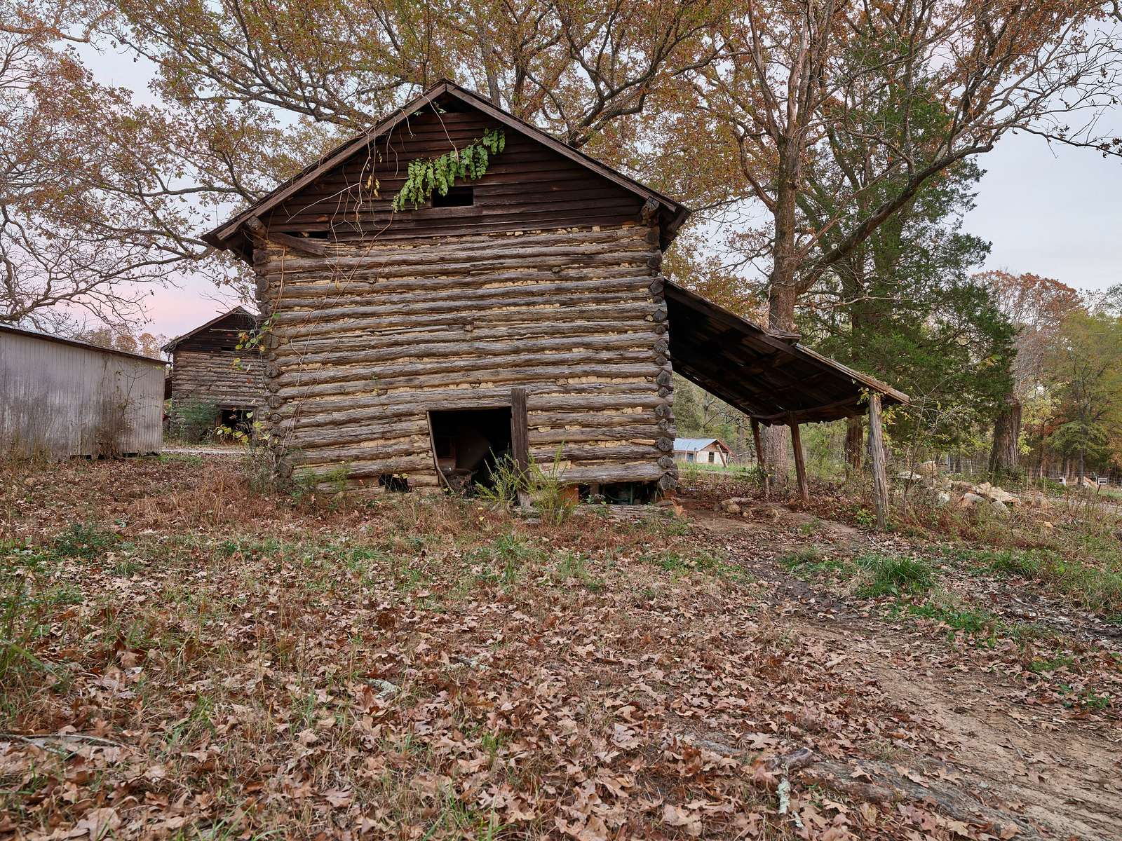 One of several tobacco barns at Prodigal Farm, near Durham in Rougemont, North Carolina