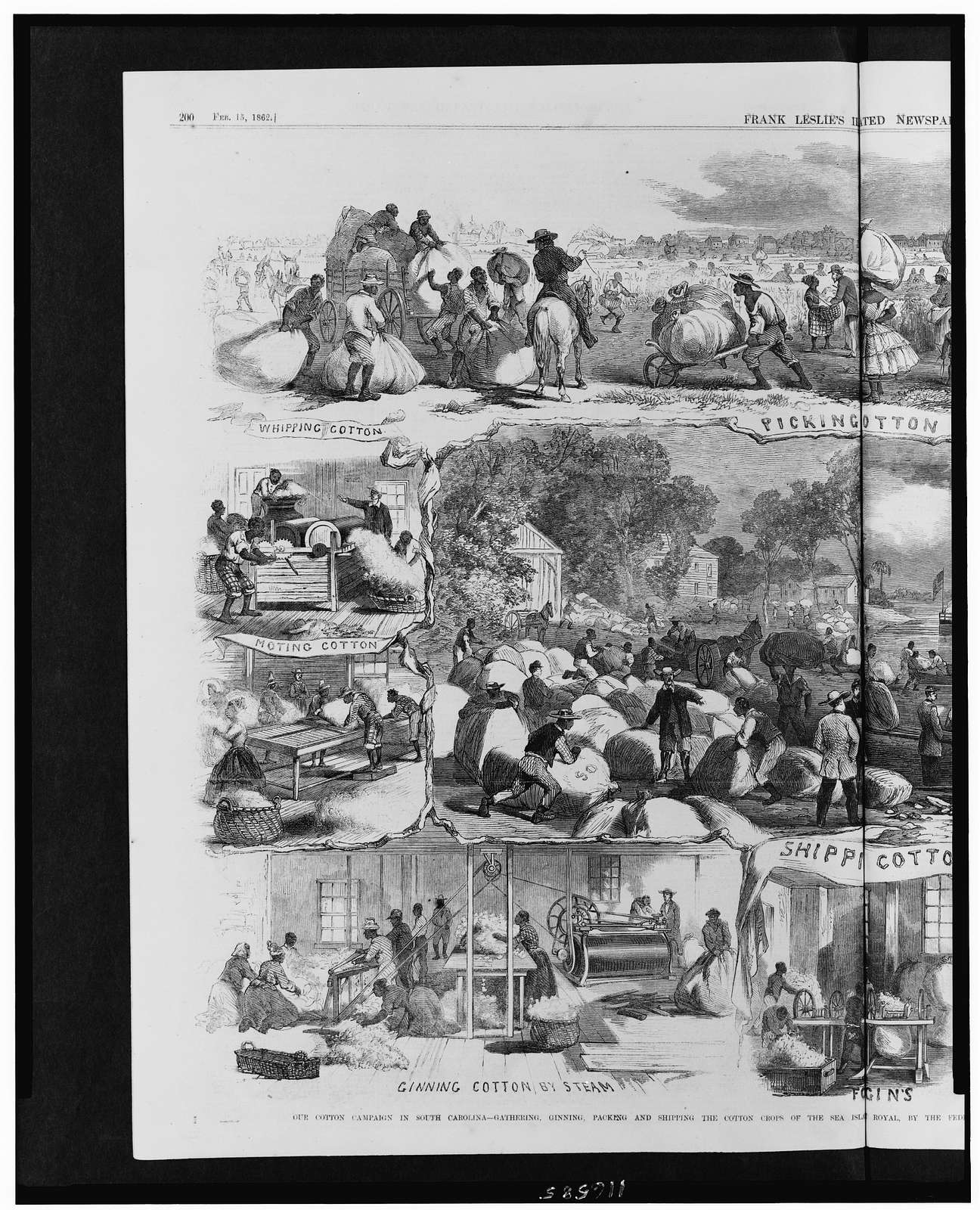Our cotton campaign in South Carolina - gathering, ginning, packing and shipping the cotton crops of the Sea Islands, Port Royal, by the Federal Army, under General Sherman / from sketches by our special artist accompanying the expedition.