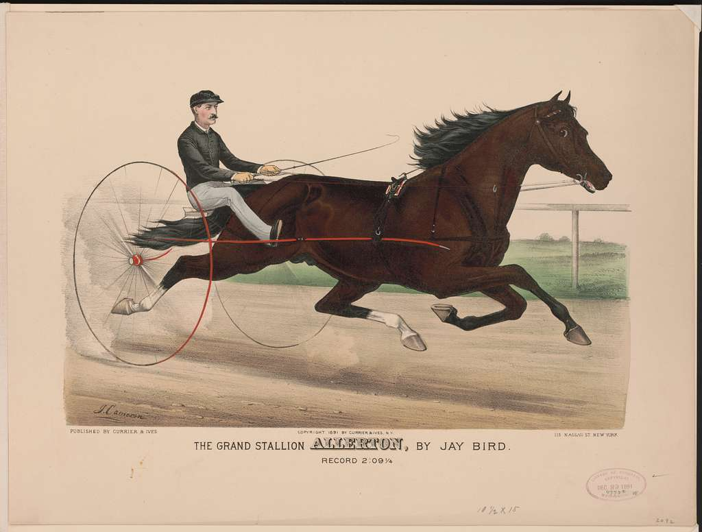 The grand stallion Allerton, by Jay Bird