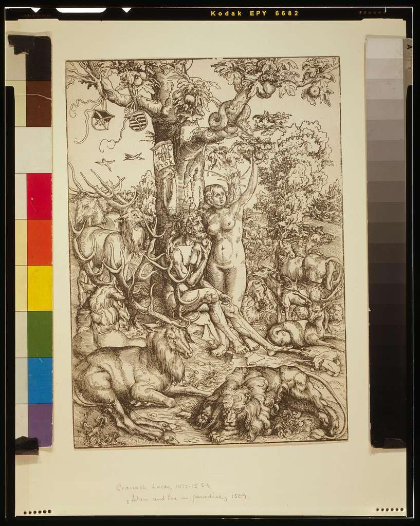 [Adam and Eve in Paradise] / L.C.