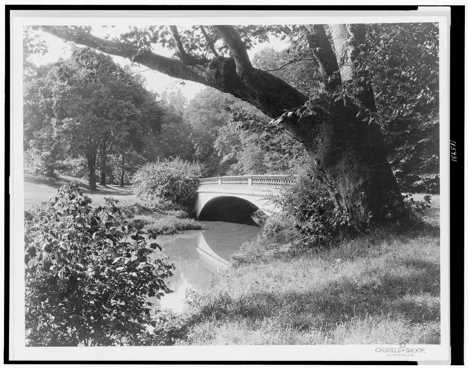 [Bridge #5, Cherokee Park, Louisville, Kentucky]