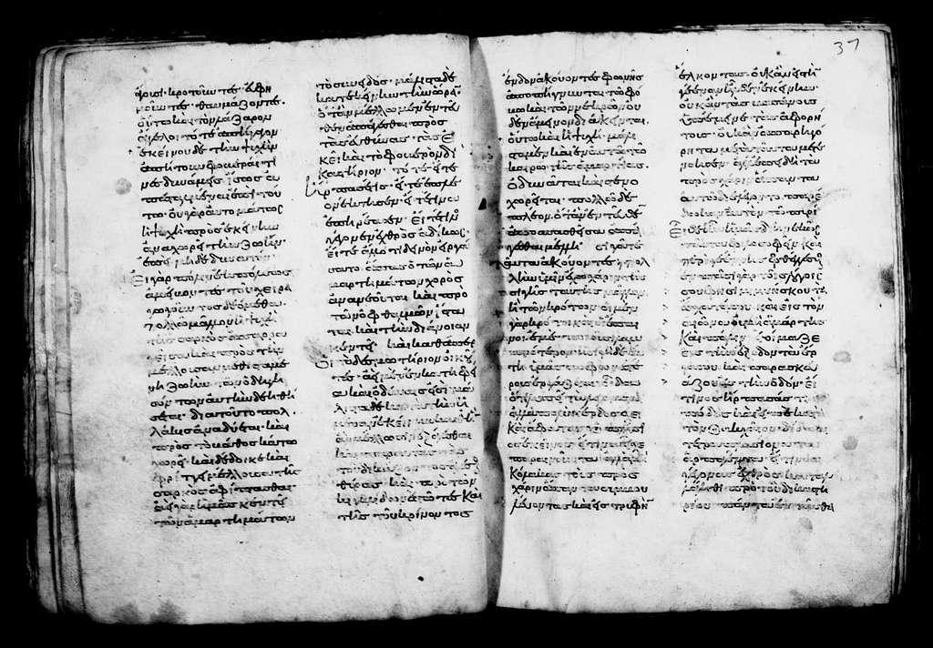 Greek Manuscripts 377. 12 Various Homilies