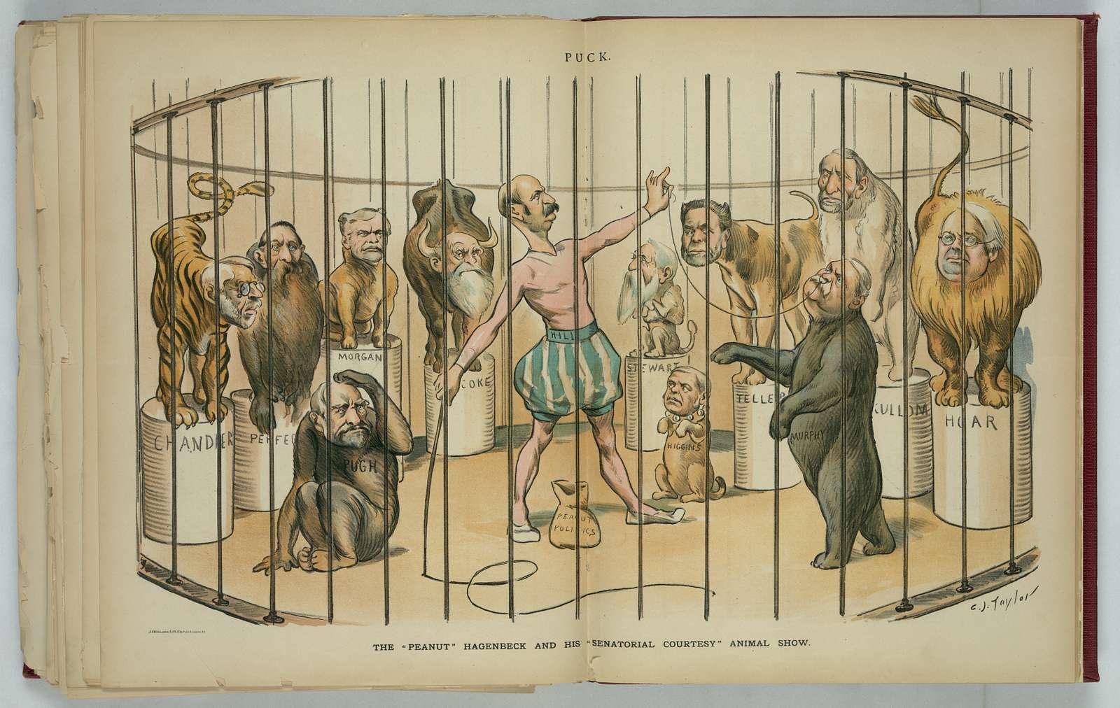 "The ""peanut"" Hagenbeck and his ""senatorial courtesy"" animal show / C.J. Taylor."