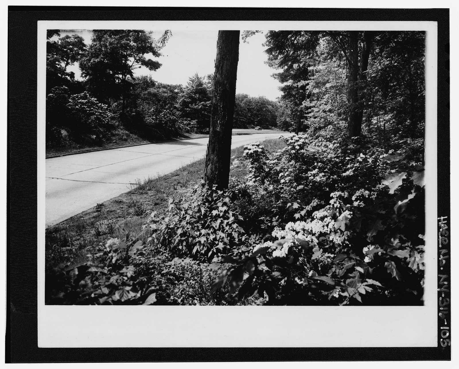Taconic State Parkway, Poughkeepsie, Dutchess County, NY