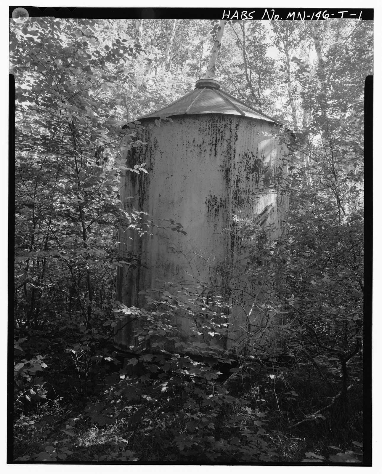 Joyce Estate, Water Tank, Chippewa National Forest Road 2144, 3 miles north of County Road 335, Grand Rapids, Itasca County, MN