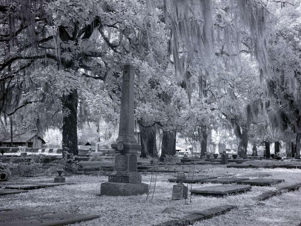 Old Live Oak Cemetery, Selma, Alabama
