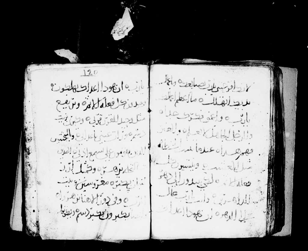 Arabic Manuscripts 20. Psalter and Odes