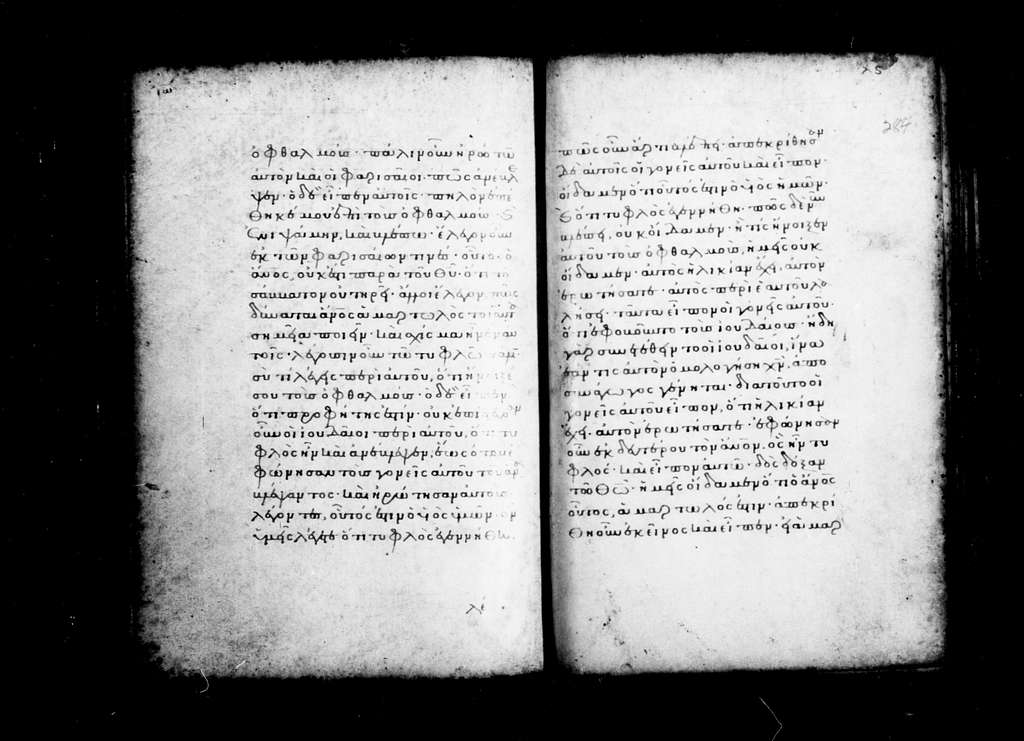 Hagios Sabas 358. Four Gospels. 13th cent. 331 f. Pg. 21 ft