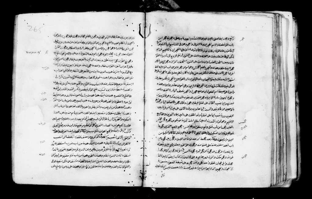 Arabic 132.Lexicon. 16th cent. 297 f. Pa. 33 ft