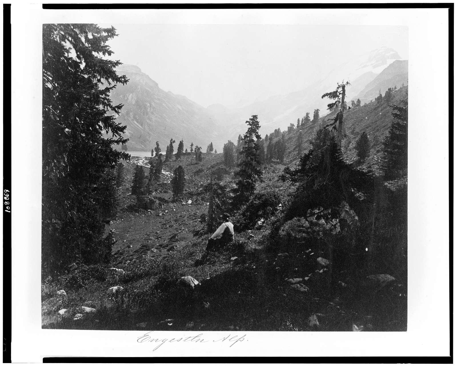 Engestln Alp