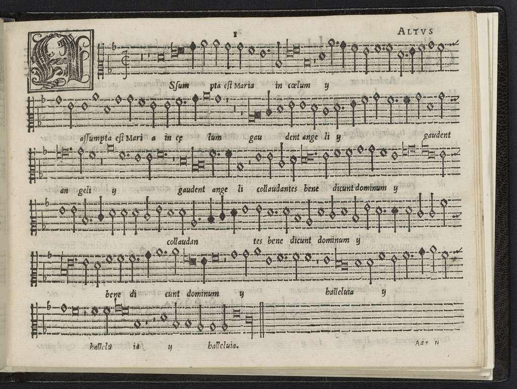 Bernardini Garvlli Calliensis, ecclesiae cathedralis Fanensis chori moderatoris, Modvlationvm quinque vocum, nvnc recens in lvcem prodevntivm liber primvs