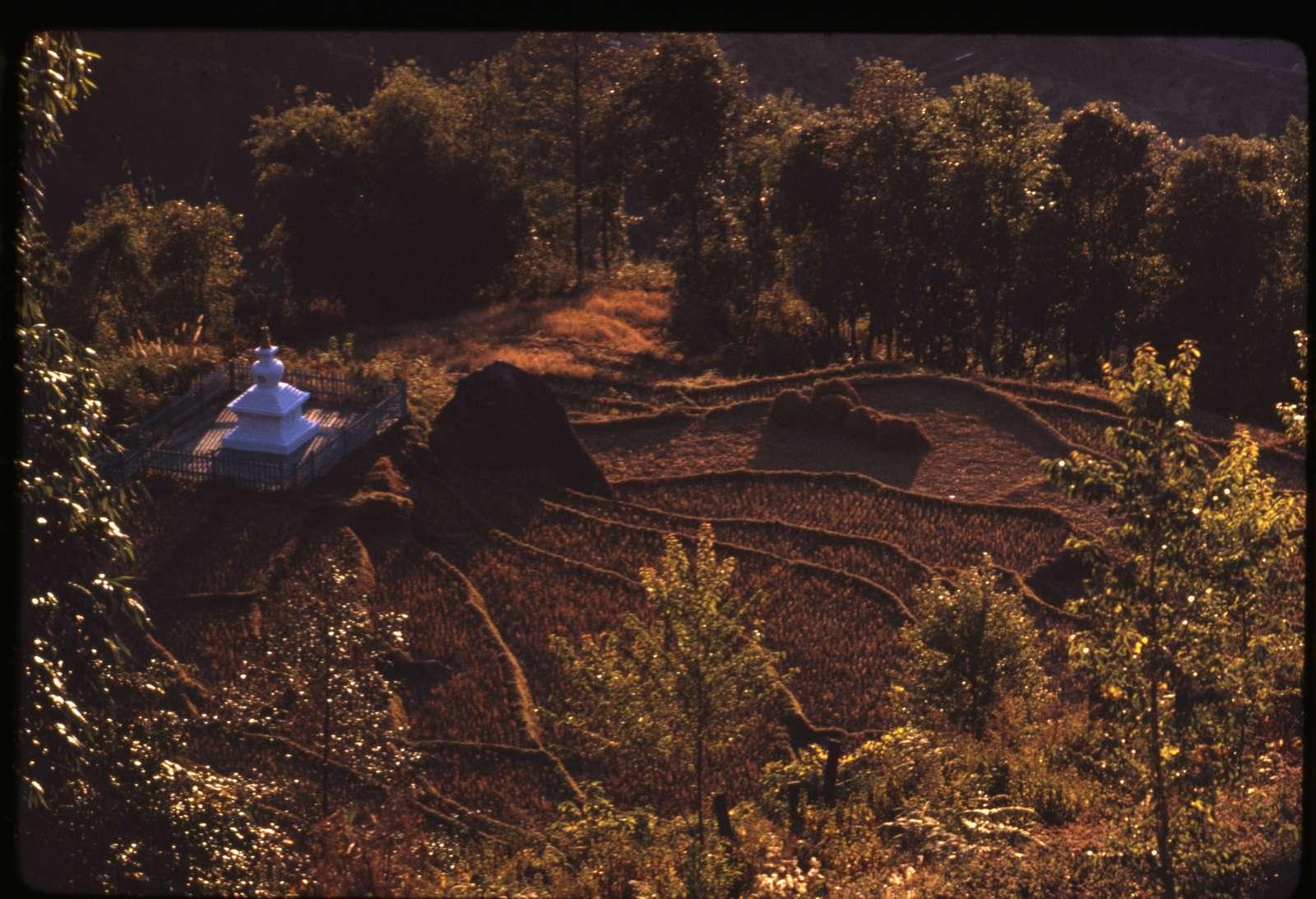 [Terraces with religious shrine?, Sikkim]