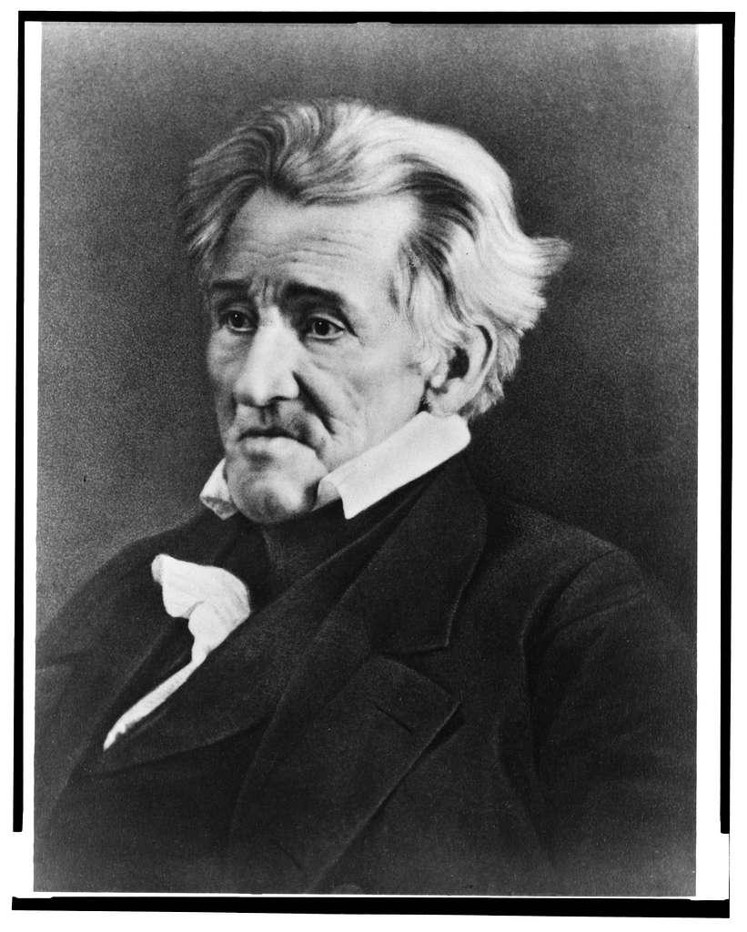 [Andrew Jackson, half length portrait, seated, facing left]