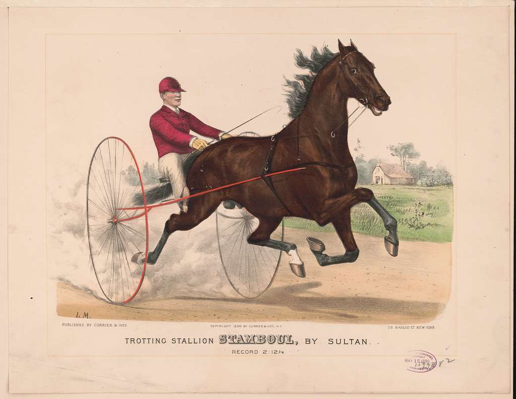 Trotting stallion Stamboul, by Sultan: record 2:12 1/4