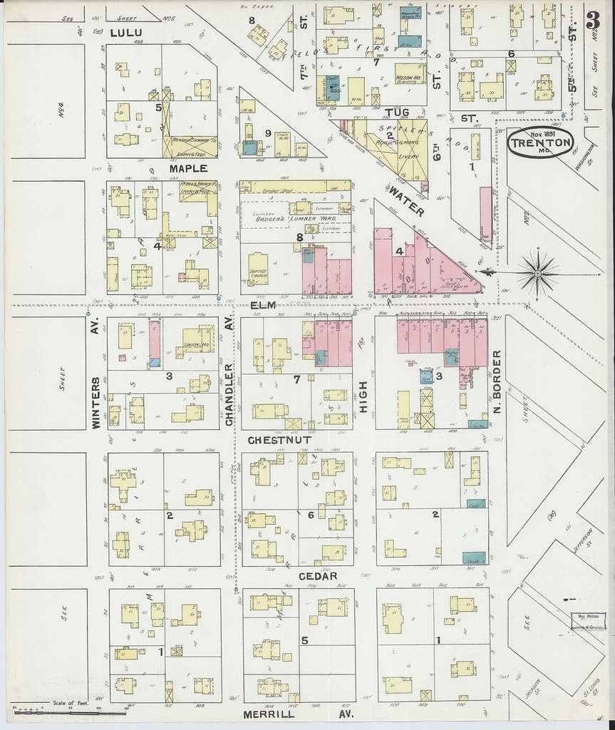 Sanborn Fire Insurance Map from Trenton, Grundy County, Missouri.