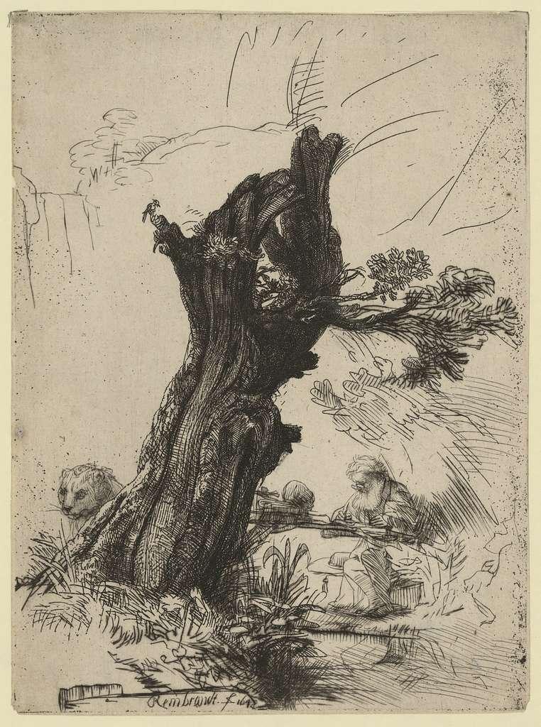 [St. Jerome beside a pollard willow] / Rembrandt.