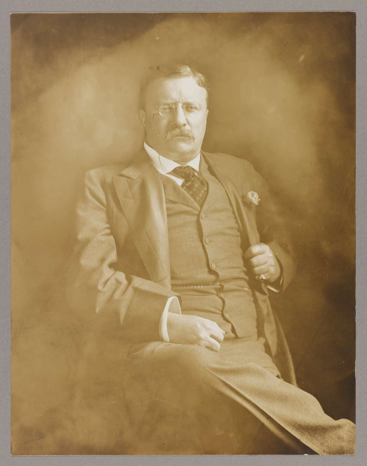 [PresidentTheodore Roosevelt, three-quarter length portrait, seated, facing front, hand gripping jacket lapel]