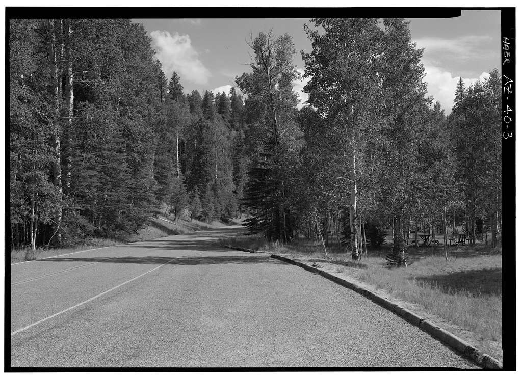 Cape Royal Road, Between North Entrance Road & Cape Royal, Grand Canyon, Coconino County, AZ