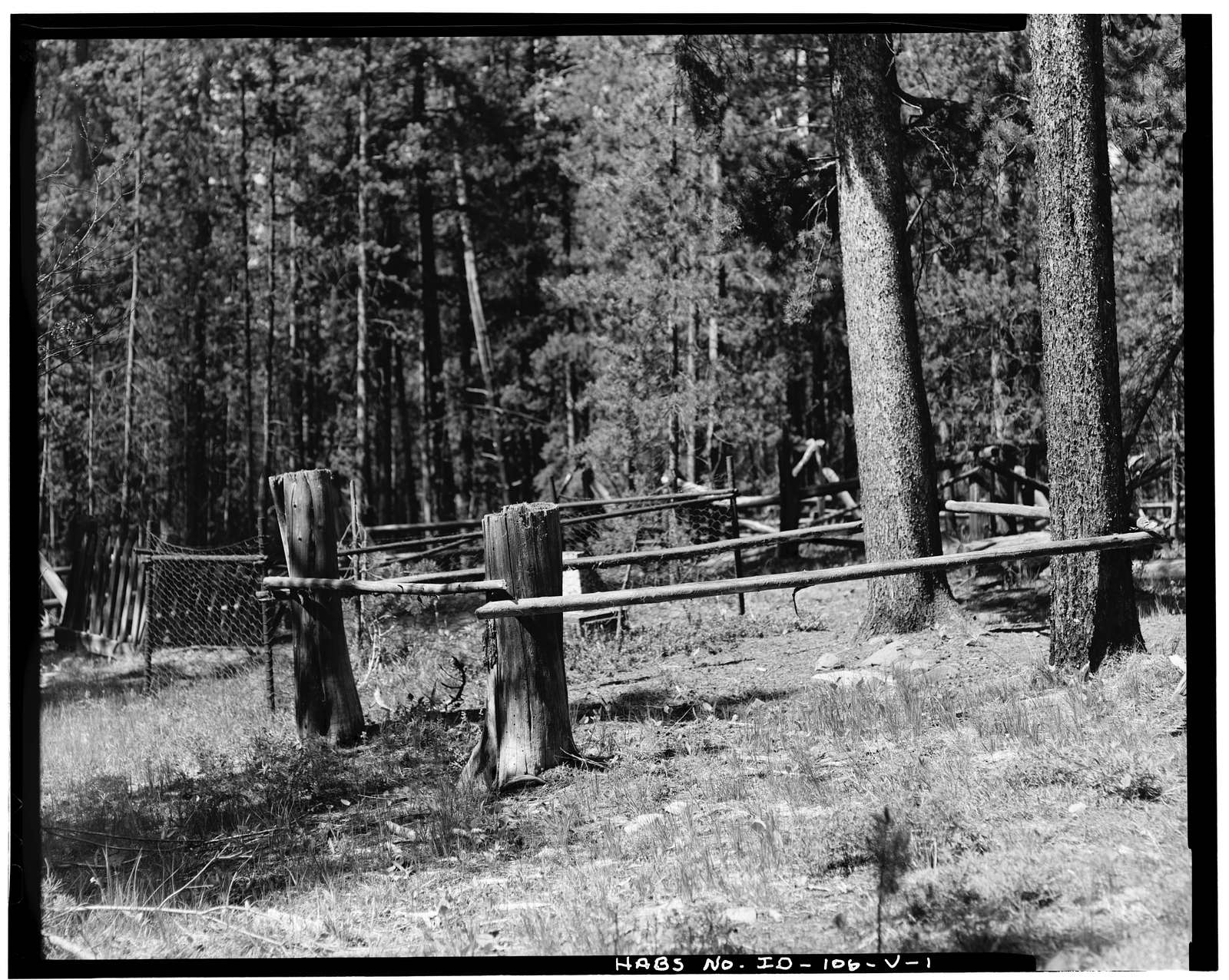 Leesburg Townsite, Cemetery, Napias Creek, Salmon, Lemhi County, ID